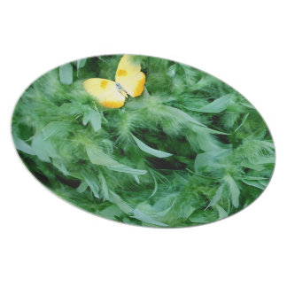 Green Feathers & Butterflies Party Plate