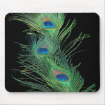 Green Feathers with Black Mousepad
