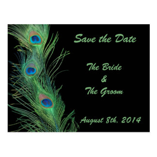 Green Feathers with Black Save the Date Postcard