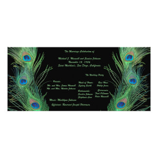 Green Feathers with Black Wedding Program