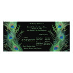 Green Feathers with Black Wedding Program Full Color Rack Card