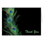 Green Feathers with Black Wedding Thank You Note Card