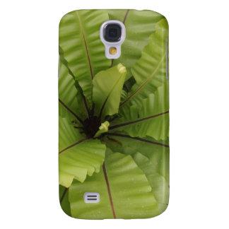 Green Fern Asplenium nidus Samsung S4 Case