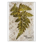 Green Fern Botanical Ferns Tropical Template Stationery Note Card