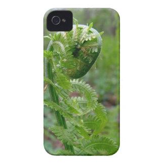 Green fern iPhone 4 covers