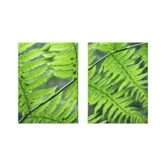 Green Fern Diptych Canvas Print