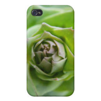 Green Fern Case For iPhone 4