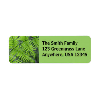Green Fern Return Address Label