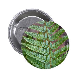 Green fern leaf pattern button