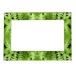 Green Fern Leaves, Digital Art Pattern. Frame Magnets