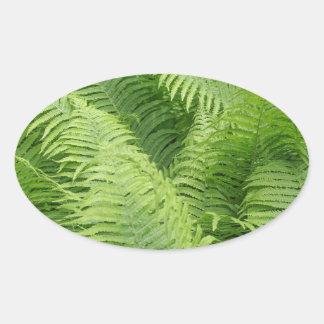 Green fern plant leaves oval sticker
