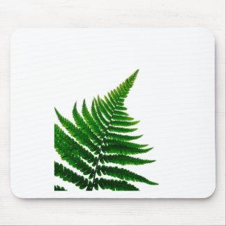 Green Fern prints Woodlands Leaf Mouse Pad