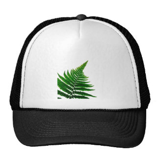 Green Fern prints Woodlands Leaf Trucker Hat