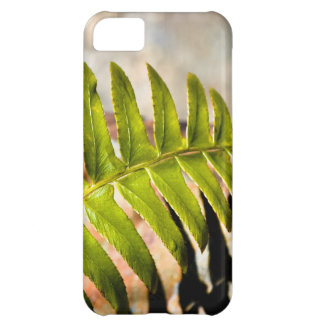 Green Fern says spring Cover For iPhone 5C