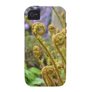 Green fiddlehead fern leaves iPhone 4 cover