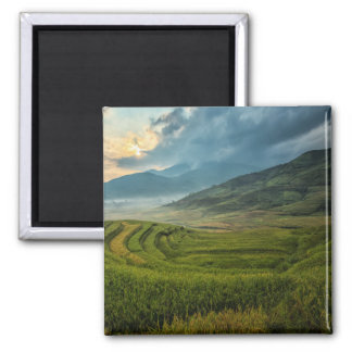 Green fields and misty mountains magnet