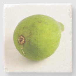 Green Fig Stone Coaster