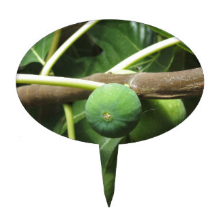 Green figs ripening on a fig tree cake topper
