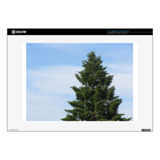 "Green fir tree against a clear sky decal for 15"" laptop"