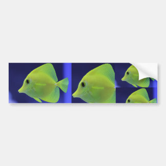 GREEN FISH BUMPER STICKER