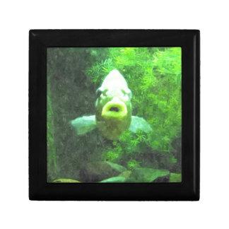 Green Fish Jewelry Box