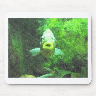 Green Fish Mouse Pad