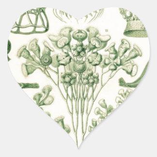 Green Flora Biological Illustration Heart Sticker