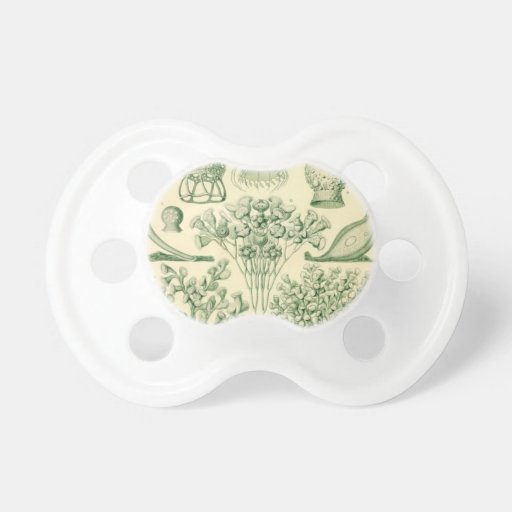Green Flora Biological Illustration Pacifiers