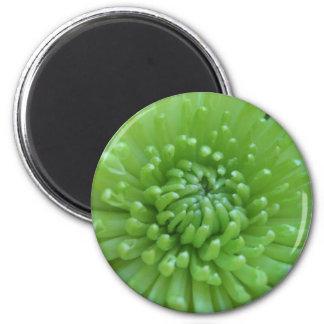 Green Flower 2 Fridge Magnets