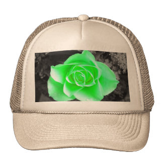 Green Flower Head with Dark Background (2) Trucker Hat