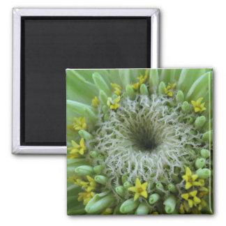 Green Flower Magnets