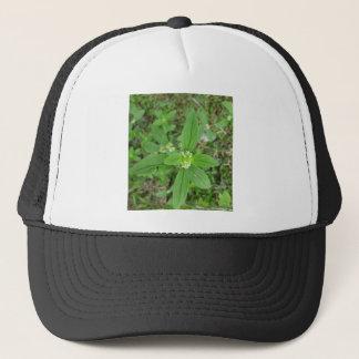 Green Flower nice garden and park Trucker Hat