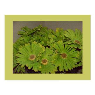 Green Flower Power Postcard