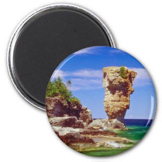 Green Flowerpot Island, Tobermory, Ontario flowers 2 Inch Round Magnet