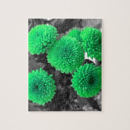 Green Flowers Puzzles