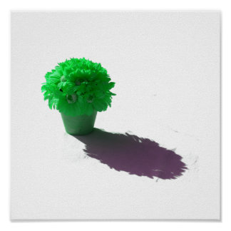 Green Flowers White Bucket and Shadow Poster