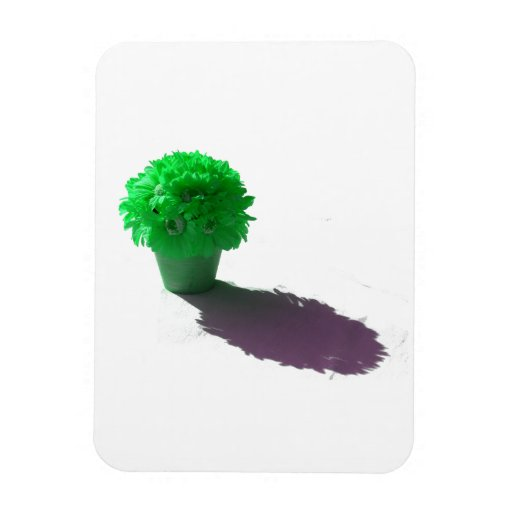 Green Flowers White Bucket and Shadow Rectangular Magnet