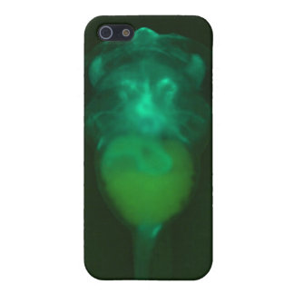 Green Fluorescent Tadpole iPhone 4 Speck Case