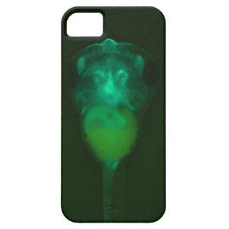 Green Fluorescent Tadpole iPhone  Case