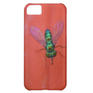 Green Fly on Orange Flower Macro Photo iPhone 5C Cover