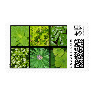 Green Foliage Postage Stamp