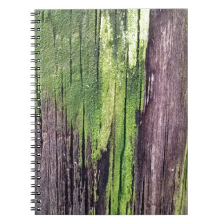 Green for the Holidays Notebooks