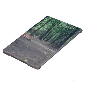 green forest narrow footpath iPad air cases