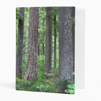 Green Forest Nature Photo Mini Binder