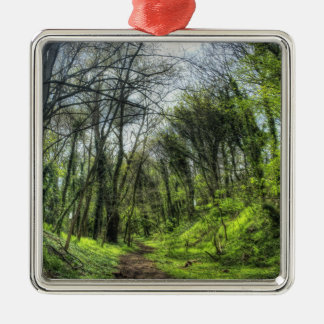 Green Forest Path HDR Metal Ornament