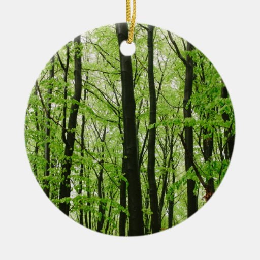 Green Forest Photography, Nature Landscape Christmas Tree Ornament