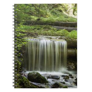 Green Forest Waterfall Notebook