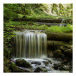 Green Forest Waterfall Poster