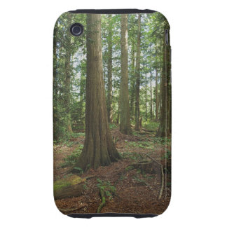 Green Forest Woodlands Tree Nature Photo Tough iPhone 3 Covers