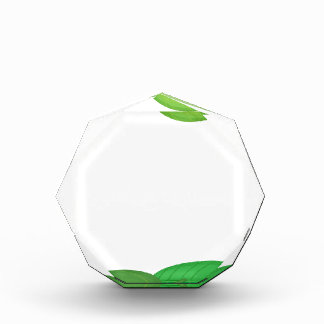 green frame acrylic award